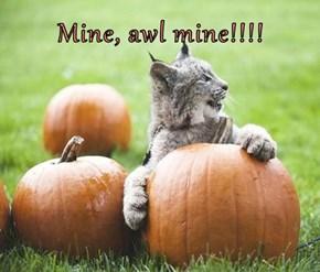 Mine, awl mine!!!!