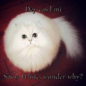 Dey cawl mi  Snow White, wonder why?