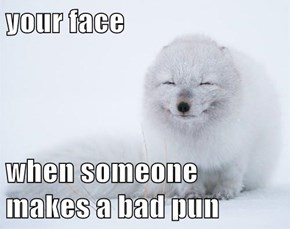 your face  when someone makes a bad pun