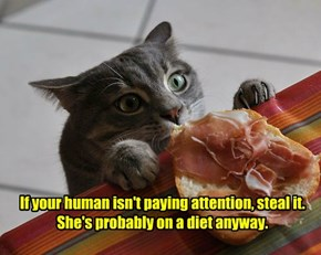 If your human isn't paying attention, steal it.  She's probably on a diet anyway.