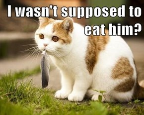 I wasn't supposed to eat him?