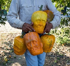 Franken-Gourds Take a While to Grow, but They're Perfect for Halloween!