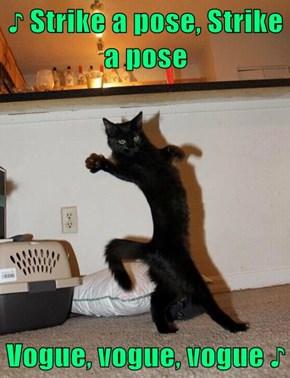 ♪ Strike a pose, Strike a pose  Vogue, vogue, vogue ♪