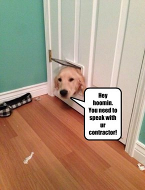 Hey hoomin. You need to speak with ur contractor!