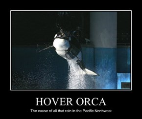 HOVER ORCA
