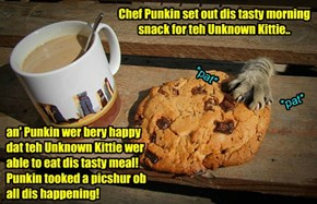 Eggsiting NEW confirmed sighting ob teh Unknowed Kitteh!!