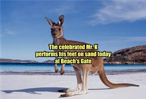 Being for the Benefit of Mr. Kangaroo