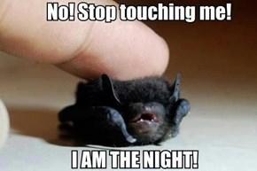 Cutest Batman