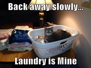 Back away slowly...  Laundry is Mine