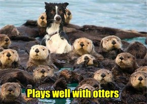 Plays well with otters