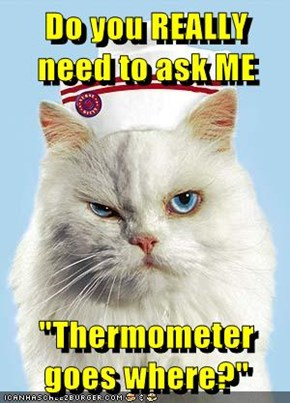 "Do you REALLY need to ask ME  ""Thermometer goes where?"""