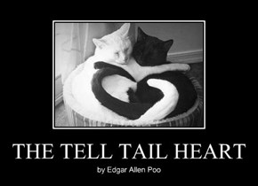 THE TELL TAIL HEART