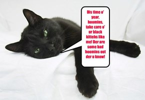 Dis time o' year, hoomins, take care o' ur black kittehs like me! Der are some bad hoomins out der u know!