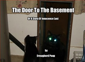 The Door To The Basement