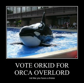 VOTE ORKID FOR  ORCA OVERLORD