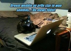 Dreem weddin an pr0n star in wun sentens...! Da mews todai!