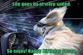 Life goes by at warp speed.  So enjoy! Happy Birthday Susan.