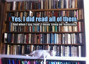 Yes, I did read all of them.