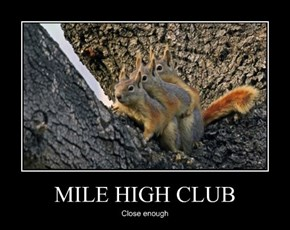 MILE HIGH CLUB