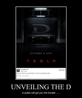UNVEILING THE D