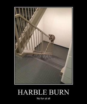 HARBLE BURN