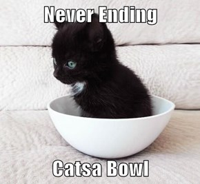 Never Ending  Catsa Bowl