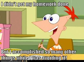 I didn't get my homework done  But I accomplished so many other things while I was avoiding it!