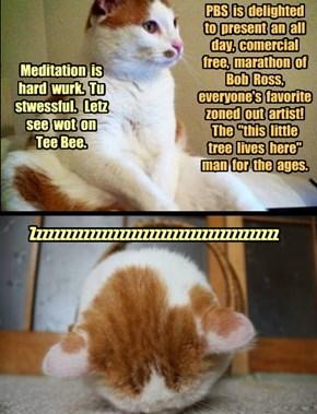Heyman Meditatation