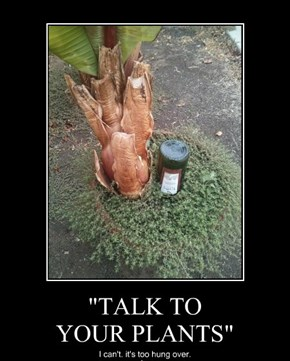 """TALK TO YOUR PLANTS"""