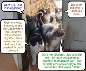 "Clive Banks ""Munnies"" Class Assignment - Millie Tabishsmythe an' Robin Banks conduct Unknowed Kitteh Tour ob important plases wher teh Unknowed Kitteh did amazing stuffs or wer seen at! => Grade reseeved: 5 Mousies out ob 5"