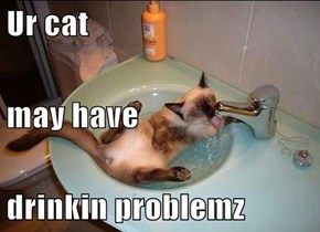 Ur cat may have drinkin problemz