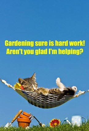 Gardening sure is hard work! Aren't you glad I'm helping?