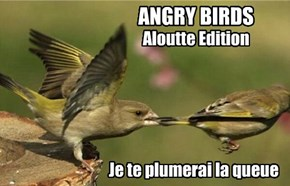 If the French Bought Rovio