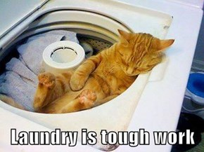 Laundry is tough work