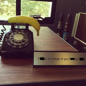 Every Office Needs One