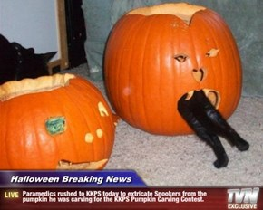 Halloween Breaking News - Paramedics rushed to KKPS today to extricate Snookers from the pumpkin he was carving for the KKPS Pumpkin Carving Contest.