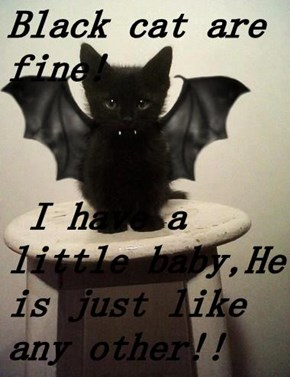 Black cat are fine!   I have a little baby,He is just like any other!!