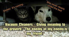 "Vacuum  Cleaners  -  Giving  meaning  to  the  proverb:  ""The  enemy  of  my  enemy is  my   friend."""