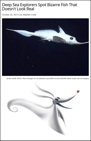 These Fish are Tim Burton Fans