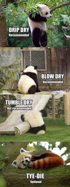 Proper Care of Panda Fur