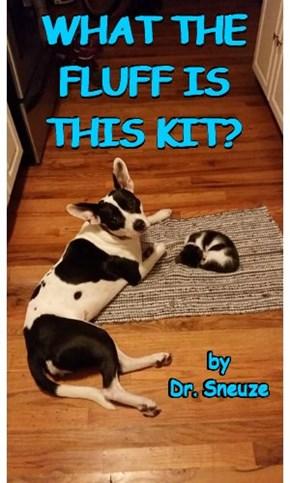 """A """"Cat on My Mat"""" Book"""