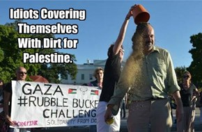 Idiots Covering Themselves With Dirt for Palestine.
