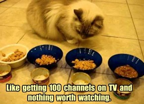 Like  getting  100  channels  on  TV  and   nothing  worth  watching.