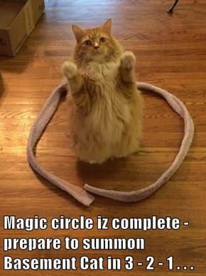 Magic circle iz complete - prepare to summon Basement Cat in 3 - 2 - 1 . . .