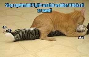Stop sqwirmin! U gits washd wedder U lieks it  or nawt!