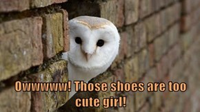 Owwwww! Those shoes are too cute girl!