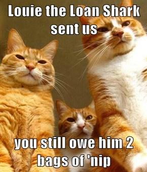 Louie the Loan Shark sent us  you still owe him 2 bags of 'nip