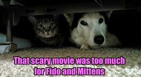 That scary movie was too much for Fido and Mittens