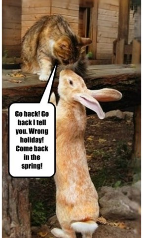 Go back! Go back I tell you. Wrong holiday! Come back in the spring!
