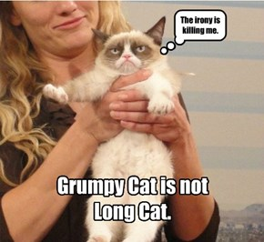 Grumpy is not Happy.
